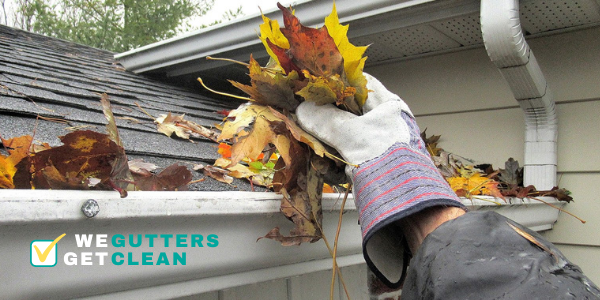 papillion gutter cleaning