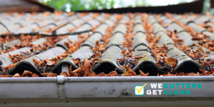 what happens if you don't clean your gutters