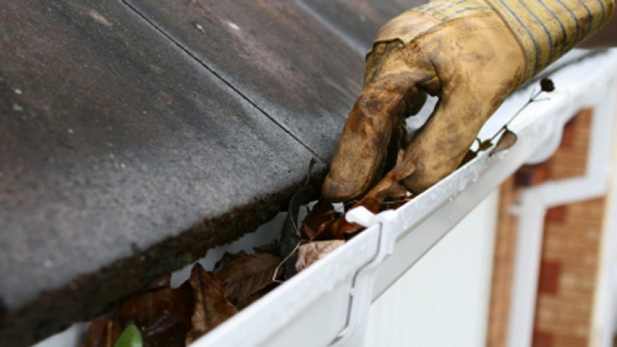 Cleaning Dirty Gutters