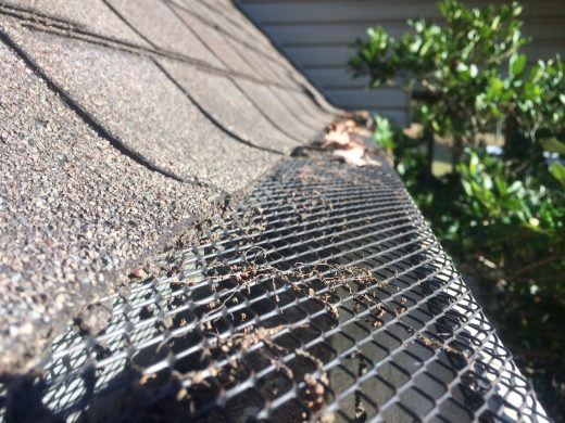Gutter Guard Reviews