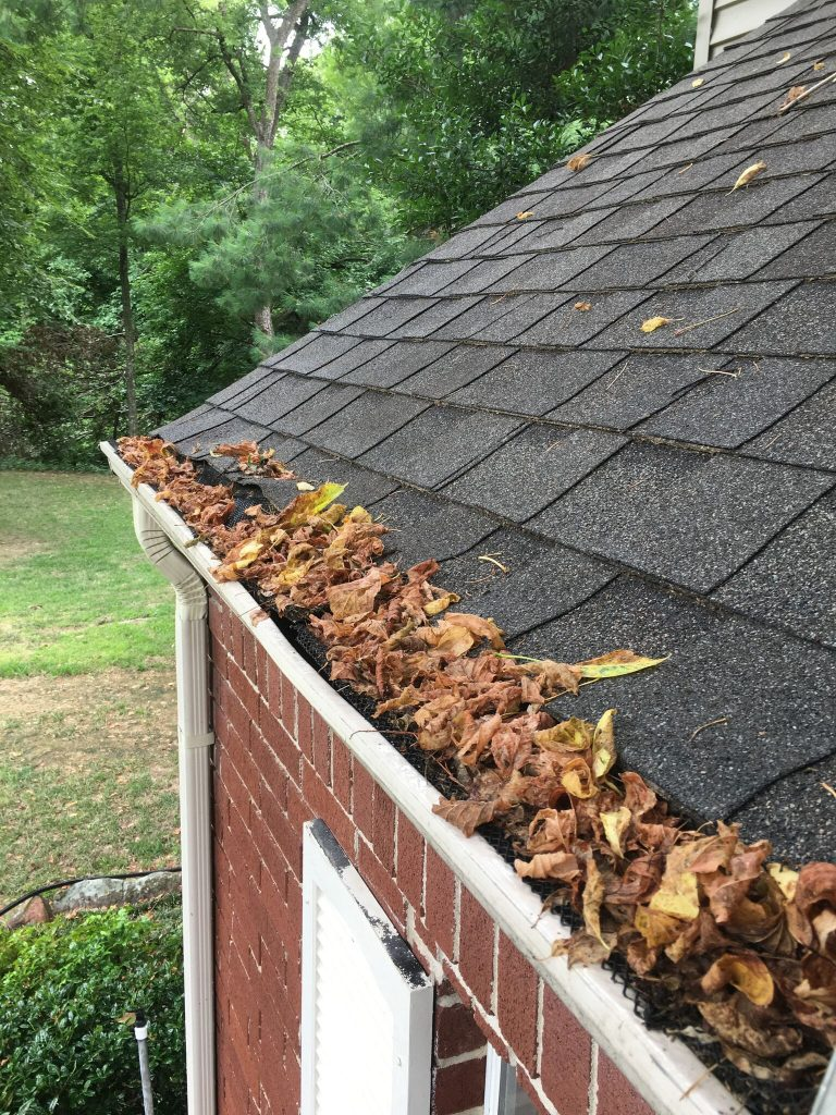 gutter cleaning oregon