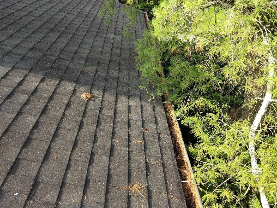 Keeping Gutters in Good Condition