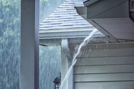 LENEXA, KS gutter cleaning