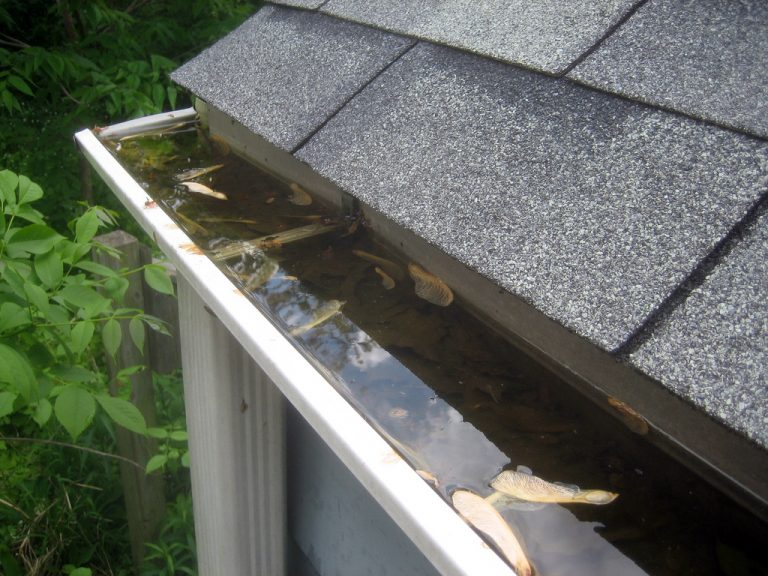 gutter cleaning BETHESDA