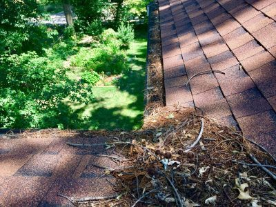 gutter cleaning st louis