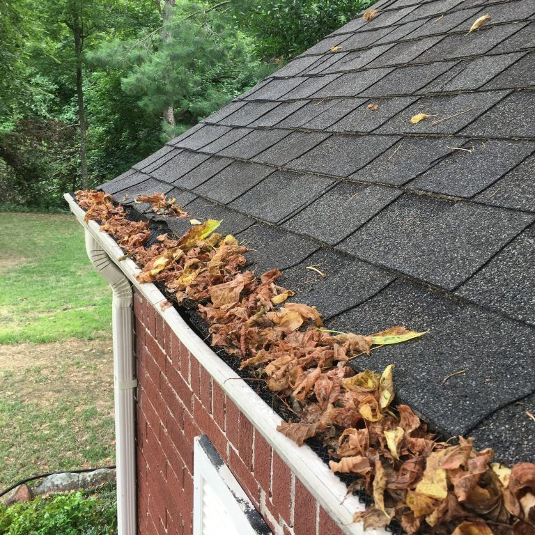 best local gutter cleaning
